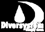лого дайвърси